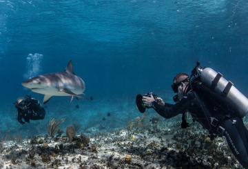 Shark Week shoot used Core SWX battery to power cameras