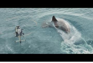 AI helps recreate prehistoric shark in 'The Meg'