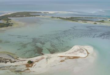 Nat Geo's new documentary series focuses on Abu Dhabi environment