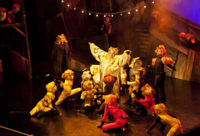 IN PICS: CATS at DUCTAC