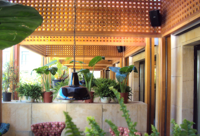 Momo opens in Beirut - with QSC AcousticDesign