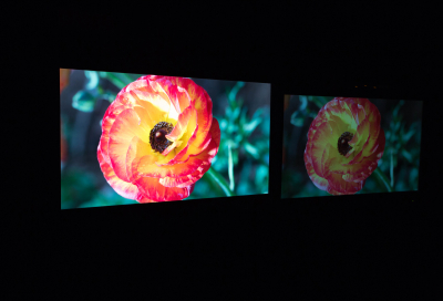Dolby launches Dolby Vision
