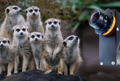 Camera Corps launches MeerCat
