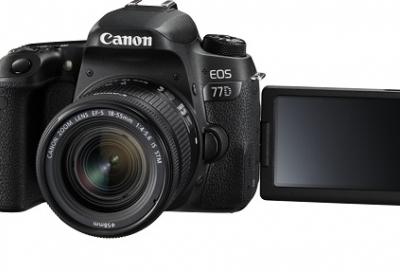 Best COLOUR SCIENCE: Canon vs Nikon vs Sony vs Fujifilm