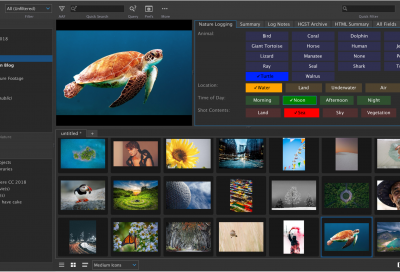 Square Box to preview new AI-Based content analysis MAM capabilities at NAB