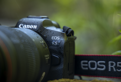 Canon launches two new cameras - EOSR5 and EOSR6
