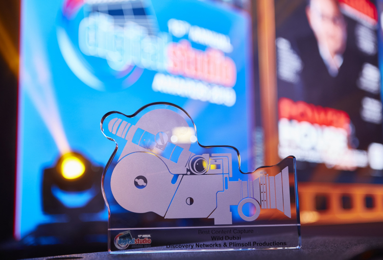 Deadline extended for DS Awards 2020 submission
