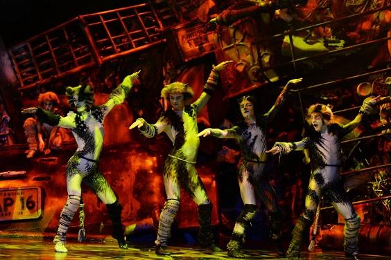 CATS, the musical, coming soon to Dubai Opera