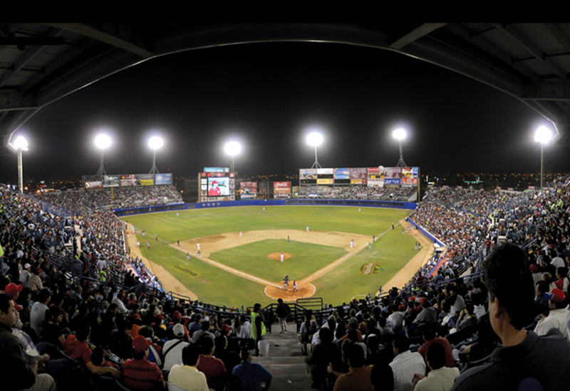 D3LED says sporting arenas in the region will benefit from the company's technology.