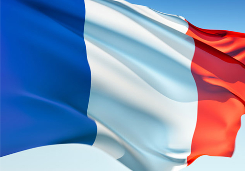 Seventeen French companies took part in CABSAT MENA 2009.