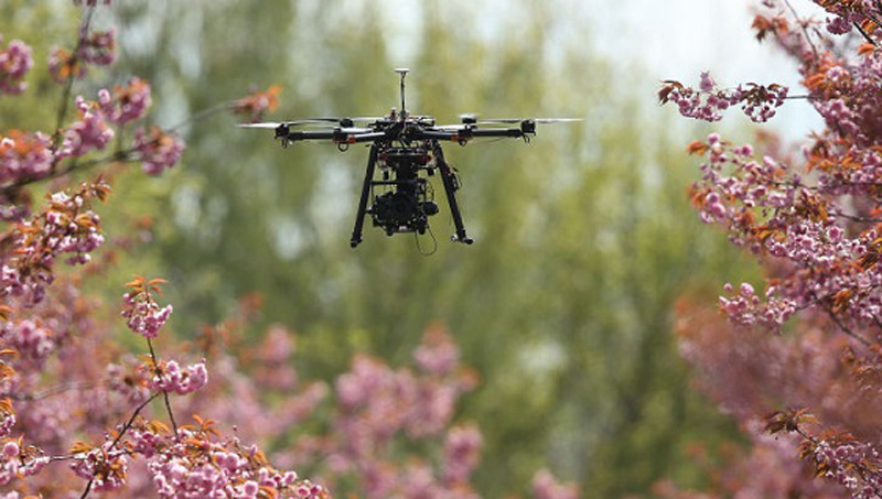 Rules applicable to both commercial and recreational drones. (Getty Images)