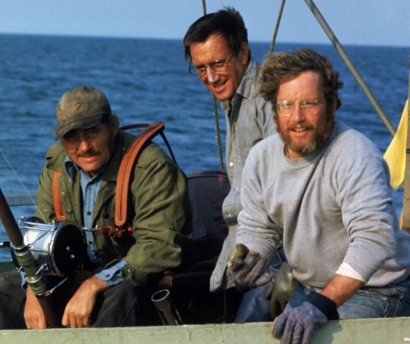 Steven Spielberg's Jaws turned 40 this year.