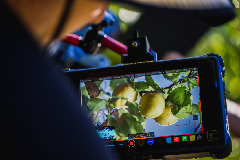 Atomos, Atomos Sumo review, Imagine extends support for ProRes, Raw, Format, File-based workflows, Video monitor, Camera operator