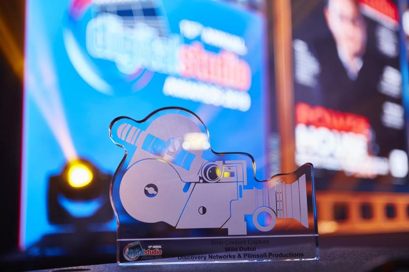 Award, DS Awards
