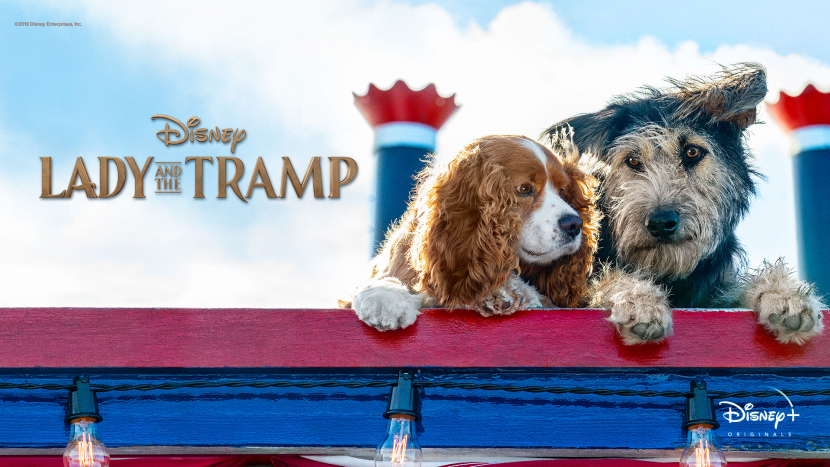 Lady and the Tramp, a Disney original is one of the many new movies that will be available to OSN users.