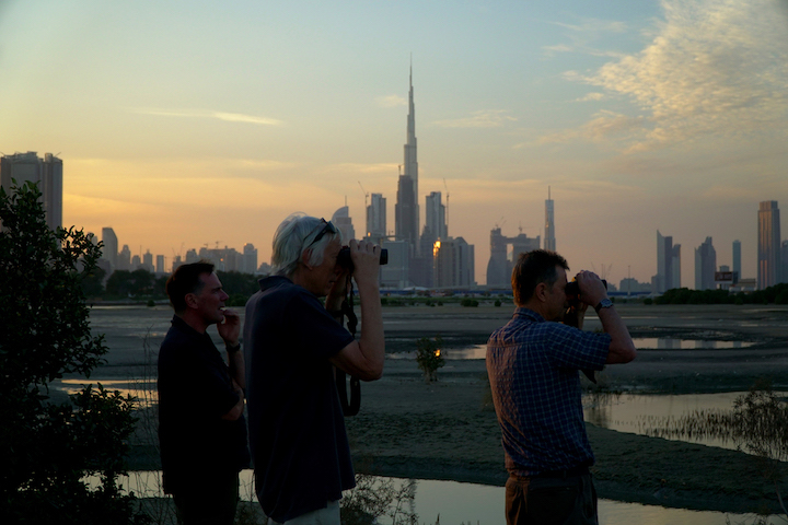 Destination Escape Discovery Channel, Discovery channel OSN, Discovery, Wild Dubai Discovery Channel, Broadcast